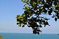Indian Ocean 14.jpg