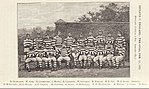 Ireland-First-Team-1875.jpg