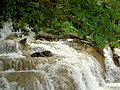 Jamaica - panoramio (28).jpg
