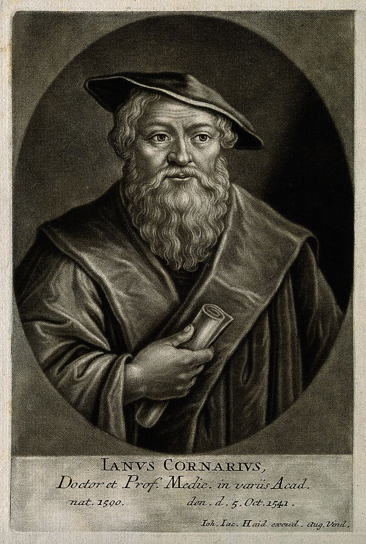 Janus Cornarius. Mezzotint by J. J. Haid, 1747. Wellcome V0001294.jpg