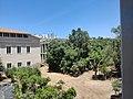 Jardín botánico de Cádiz - IMG 20210702 140938.jpg