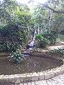 Jardim Botânico do Rio de Janeiro 16.jpg
