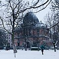 Jardin des Plantes under snow 2013-03-12 n05.jpg