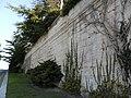 Jardin des doms - panoramio - Vinko Rajic (39).jpg
