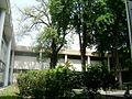 Jardins no prédio da reitoria da UFRJ.jpg