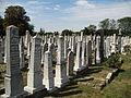 Jevrejsko groblje 4.jpg