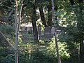Jewish cemetery in Gdansk - panoramio - Sławek Zawadzki.jpg