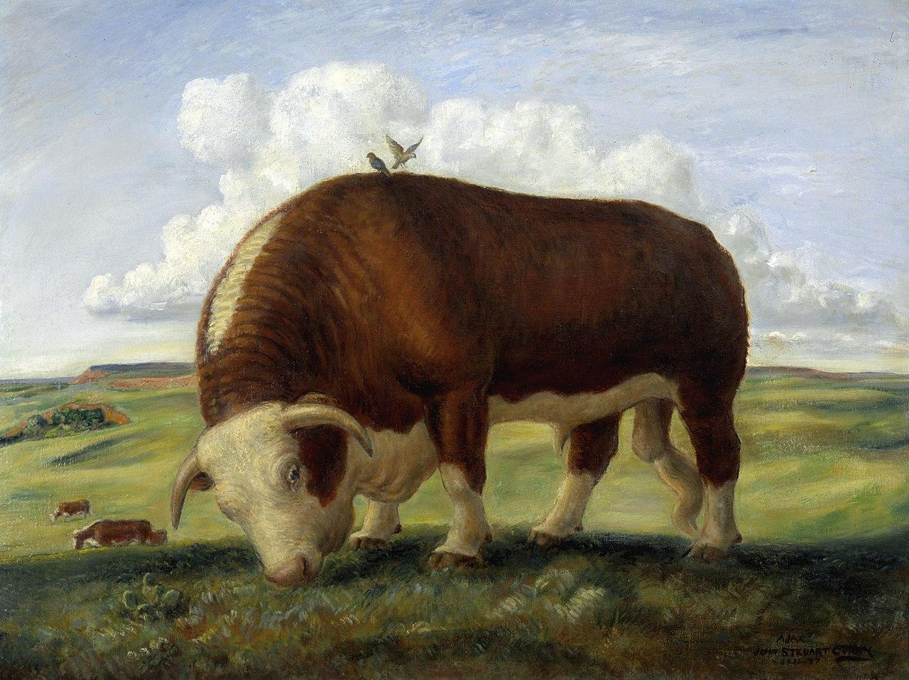 Cow Painting On Canvas Uk Animals Lartist