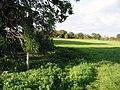 Junction of footpaths near Tilmanstone - geograph.org.uk - 589906.jpg