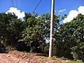 Jundiaí - SP - panoramio (52).jpg