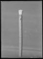 Käpp av ljust, knöligt trä - Livrustkammaren - 1862.tif