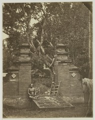 KITLV 26559 - Isidore van Kinsbergen - Sacred tree in Bali - Around 1870.tif