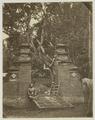 KITLV 26559 - Isidore van Kinsbergen - Sacred tree in Bali - Around 1870.tif