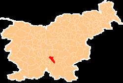 Vị trí của Dobrepolje ở Slovenia