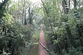 Kenilworth Greenway from the bridge - geograph.org.uk - 982152.jpg