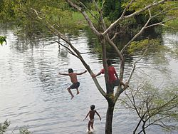 Kids swimming in tahuayo river in upper amazon 2010.jpg