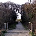 King's Passage, New Forest - geograph.org.uk - 369958.jpg