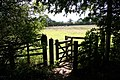 Kissing Gate - geograph.org.uk - 521470.jpg