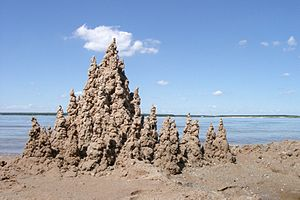 A sandcastle