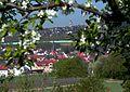 Klein-Winternheim zur Zeit der Obstblüte - Ortstotale.jpg