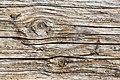 Knots in old Planking 9747.jpg