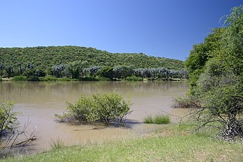 The Kunene river viewed from the Namibian side...
