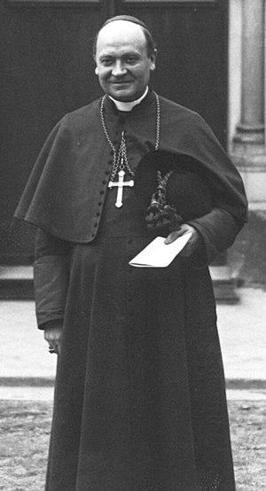 Léon-Adolphe Amette - Cardinal Amette in 1913