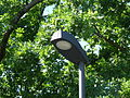 LED streetlamp in Tallinn 003.JPG