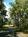 LHHV Field Trip to Gettysburg september 2016 - panoramio - Ron Shawley (188).jpg