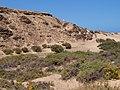 La Oliva, Las Palmas, Spain - panoramio (13).jpg