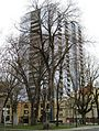 Ladd Tower Portland trees.JPG