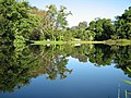 Lago menor - panoramio.jpg