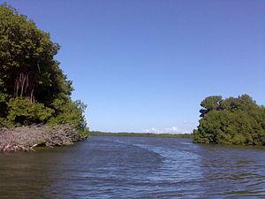 Laguna de la Restinga - Image: Laguna la Restinga