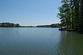 Lake Spivey from RMS2 toward the dam.jpg