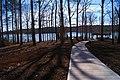 Lake Wheeler Park - panoramio (7).jpg