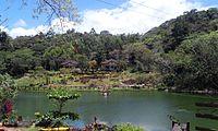 Lake in Mambukal.jpg