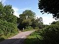 Lane near Cranbrook - geograph.org.uk - 1478195.jpg