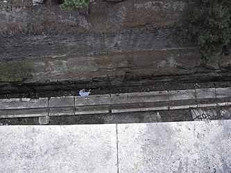 Largo di Torre Argentina drainage 2.jpg