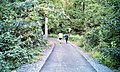 Late afternoon walk (50433293277).jpg