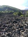 Lava flow from 1992 Etna eruption.jpg