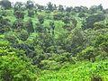 Le Paysage Bamougong.jpg