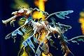 Leafy Sea Dragon (290117243).jpg