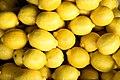Lemons 3.jpg