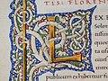 Leonardo bruni, oratio in funere iohannis strozze, firenze 1450-75 ca. (bml, pluteo 52.5) 04 iniziale miniata L.jpg