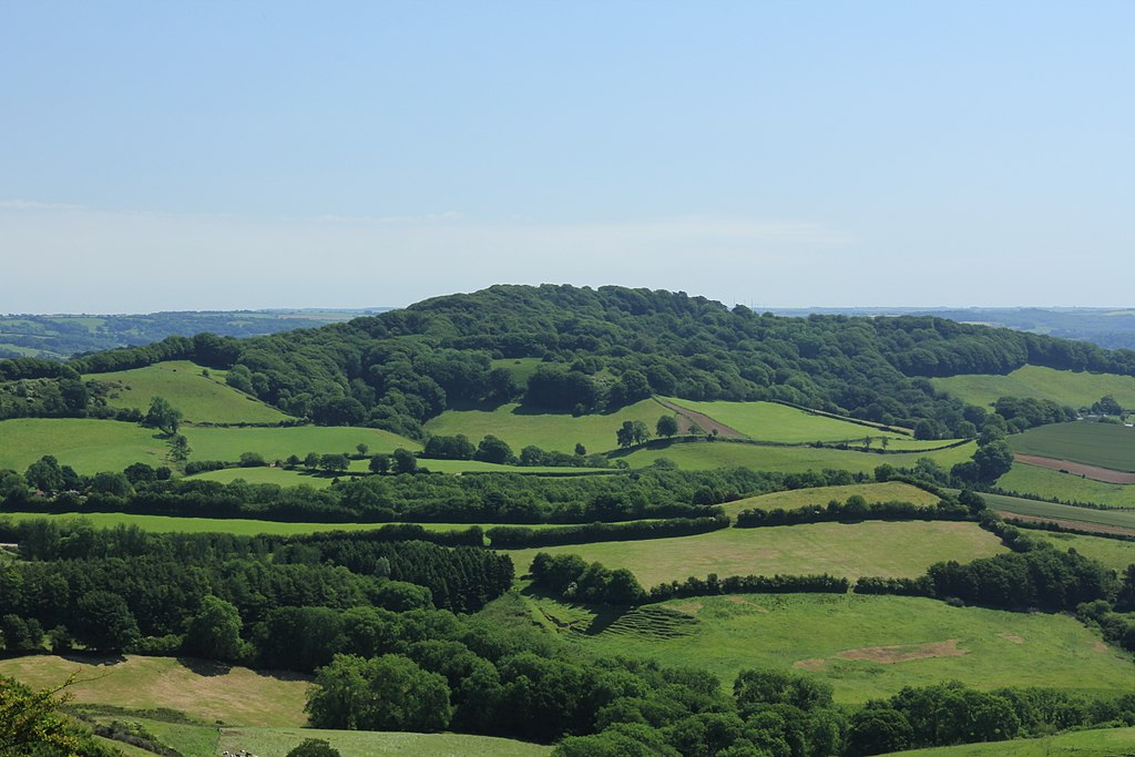 Lewesdon Hill from the west.jpg