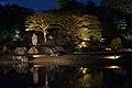 Light-up show in Rikugien (31678923358).jpg