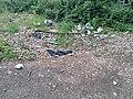 Litter Park Lane.jpg