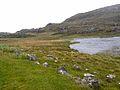 Loch Ballyhaugh - geograph.org.uk - 1449241.jpg