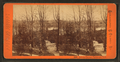 Lovers Retreat, Fairmount Park, from Robert N. Dennis collection of stereoscopic views.png