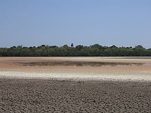 Low water level at Lake Bemalae and coloured algae on 21 Aug 2005.jpg